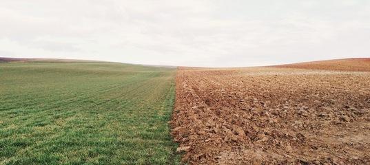 В Кимрском районе сельхозкооператив завалил землю твердыми бытовыми отходами