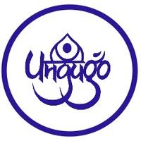 Логотип Дом Индийской Культуры ИНДИГО